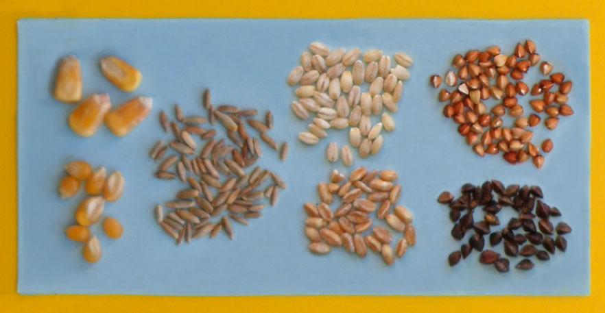 foto cereali